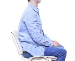 慢性の腰痛の原因